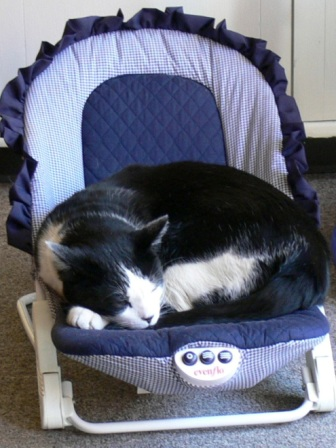 Jake asleep in baby seat