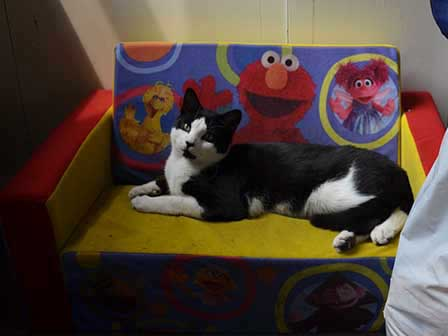 Simon on baby couch